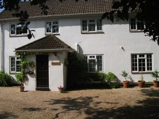 Rudbeckia - New Forest vacation rentals