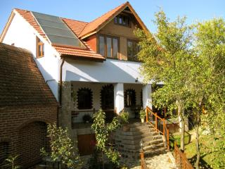 • VILLA CRINA • our jewel for high demands - Sibiu vacation rentals