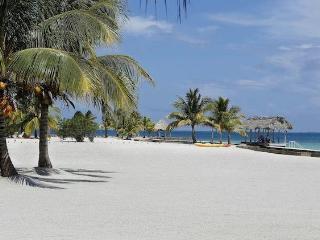 Luxury 5 bedroom Belize villa. - Antigua and Barbuda vacation rentals