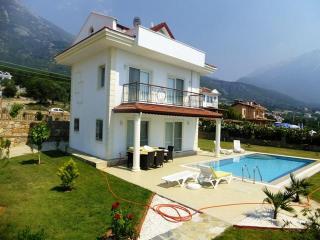 Angel Villa B - Fethiye vacation rentals