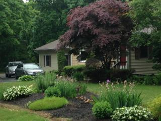 The Palm tree INN Prvt 2nd flr ste - Port Jefferson Station vacation rentals