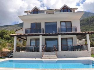 Angel Devine Villa B - Fethiye vacation rentals