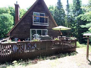 Oh Brians cottage (#714) - Wiarton vacation rentals