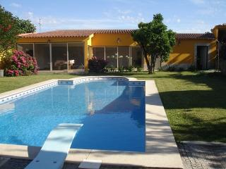 Elegant Villa W/ Swimming Pool - Braga vacation rentals