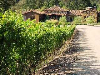 La Bastide des Vignes 4BR Main House - Napa County - United States vacation rentals