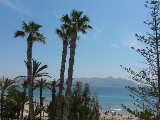 Incredible apartment on the beach - Benidorm vacation rentals