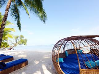 Stunning Beach Cottage on White Sand Beaches - Bocas del Toro vacation rentals