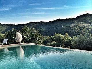 Fonte Cicerum - Paciano vacation rentals
