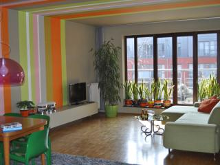 2 bedrooms, each with own bathroom. Pvt parking. - Brussels vacation rentals