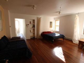 Quiet , Charming 2 X Bedrooms Duplex 1000 Sq. Ft. Sleeps X 6 People - New York City vacation rentals