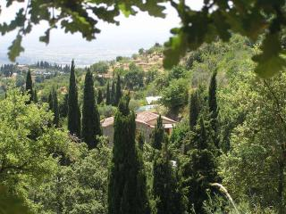 Villa Rosa: Tuscan dream home in the hills with private pool, terrace and garden - Cortona vacation rentals