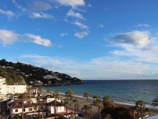 La Herradura Seaside Apartment - La Herradura vacation rentals