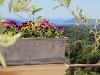 Villa La Lavande - Valbonne vacation rentals