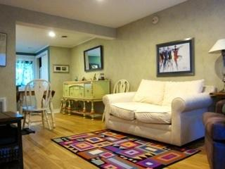 Quaint Cozy clean condo in beautiful Manchester Vt - Stratton and Bromley Ski Areas vacation rentals
