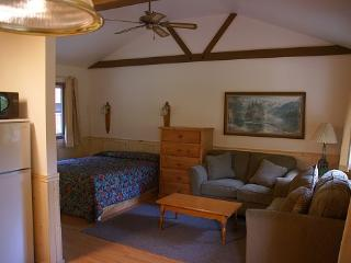 Snowbell and Camellia adorned 1 bedroom river view - Felton vacation rentals