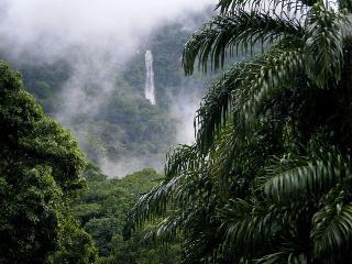 CASA de EDEN - La Ceiba vacation rentals