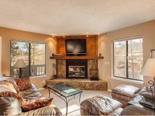 Bullwinkle's Folly - 2BD/2BA w/ mountain views! - Silverthorne vacation rentals