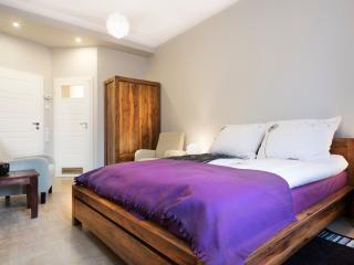 Old Town, large, brand new, 2 bathrooms - Southern Poland vacation rentals