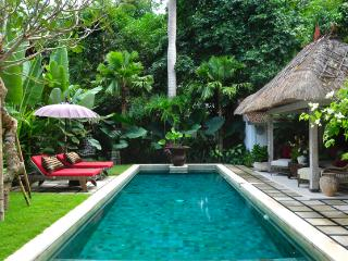 Quite Cosy 2  Bedroom Villa in Batubelig - Kuta vacation rentals
