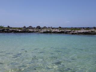 Condo Bellmare A1 paradise luxury lagon view - Puerto Aventuras vacation rentals