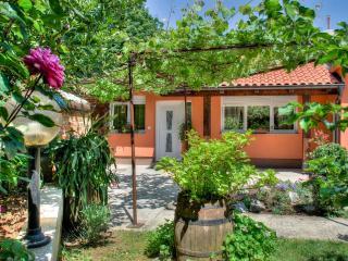 Cozy House with a large Backyard - Primorje-Gorski Kotar vacation rentals