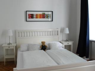 Spacious 70m² Deluxe Apartment - Vienna vacation rentals