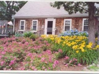 Cape & Long Pond - Reserve Your Fall Getaway - Brewster vacation rentals