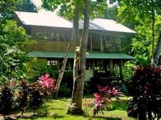 Costa Rica Beach Rentals; Lonely Planet recommends - Osa Peninsula vacation rentals
