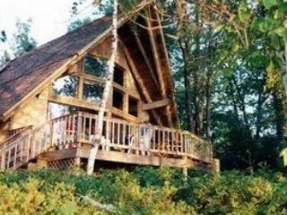 Lakefront House on Beautiful Northern Michigan Lak - Lewiston vacation rentals