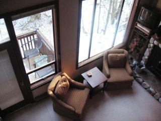 Lodging  Mt Baker Ski Resort in Snowater-BIG SNOW - Glacier vacation rentals