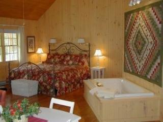 """The Ultimate Secluded Getaway"" - Rockbridge Baths vacation rentals"