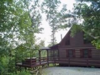 Blue Ridge Mountain Cabin, Blue Ridge Georgia - Blue Ridge vacation rentals