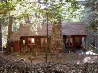 Affordable Summer! 1920s Mountain Cabin in Pines! - Pauma Valley vacation rentals