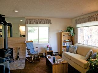 AFFORDABLE 1Bd or 2Bd Townhouse at Ski Area - Steamboat Springs vacation rentals
