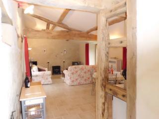 ELYSIUM - Saumur vacation rentals