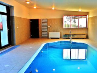 Luxurious Wellness Villa - Jindrichuv Hradec vacation rentals