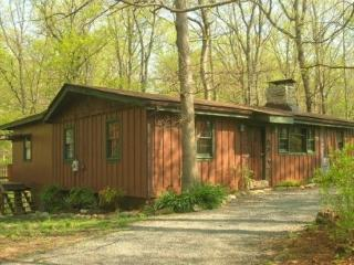 Mountain Whisper Cabin - Luray vacation rentals
