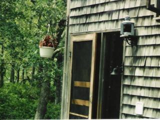 Acorn in the Woods - Peaceful 4 bedroom on an acre - Vineyard Haven vacation rentals