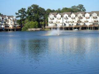 Vacation Rental in Charleston Area