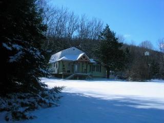 Red Road Ranch Seasonal house rental - Margaretville vacation rentals