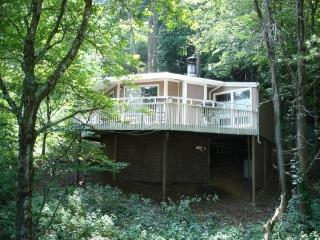 Romantic Mtn Getaway-Winter Special...$79/Night - Banner Elk vacation rentals
