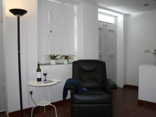 House in Murtosa near Ria de Aveiro near of the be - Beiras vacation rentals