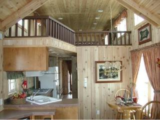 Country Setting - Comfy Cabin. - Kearney vacation rentals