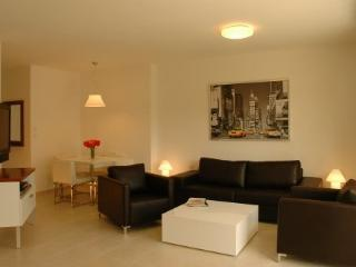 Luxury Condominium - Tel Aviv vacation rentals