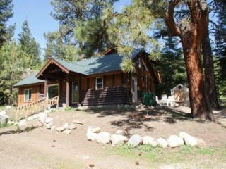 STORYBOOK COTTAGE with HOT TUB by Payette Lake - McCall vacation rentals