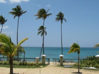 Beachfront, Rainforest and Waterpark - Puerto Rico vacation rentals