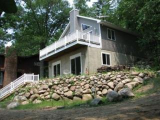 Loon Call Cottage  wireless access available - Delton vacation rentals
