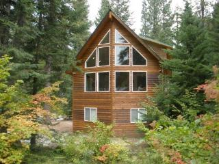 Fun Family Cabin in the Leavenworth Area! - Plain vacation rentals