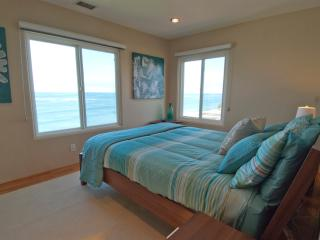 Ocean front Jacuzzi, Bedrooms with ocean views!!! - Encinitas vacation rentals