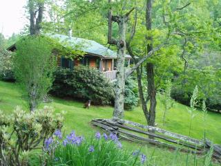 Pear Tree Cottage:Real Log Cabin Dog Friendly WiFi - Boone vacation rentals